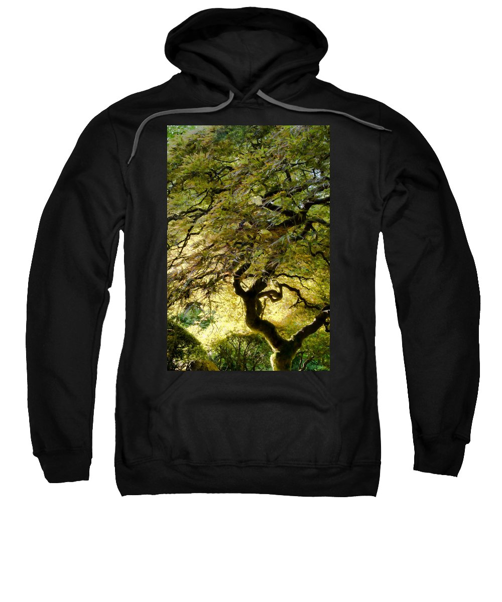 Tree Sweatshirt featuring the photograph Magical Tree by Don Schwartz