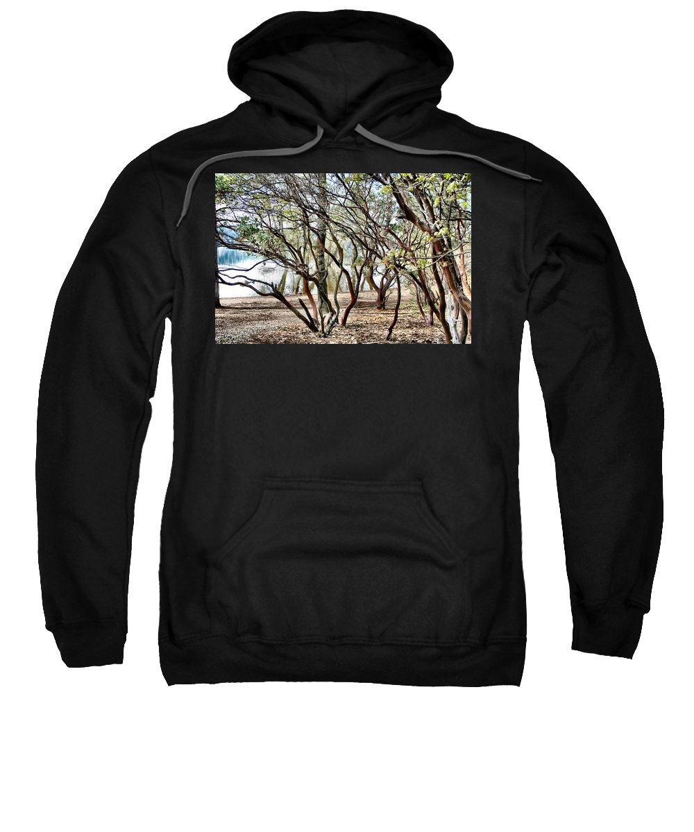 Manzanita Sweatshirt featuring the photograph Manzanita by Sally Bauer