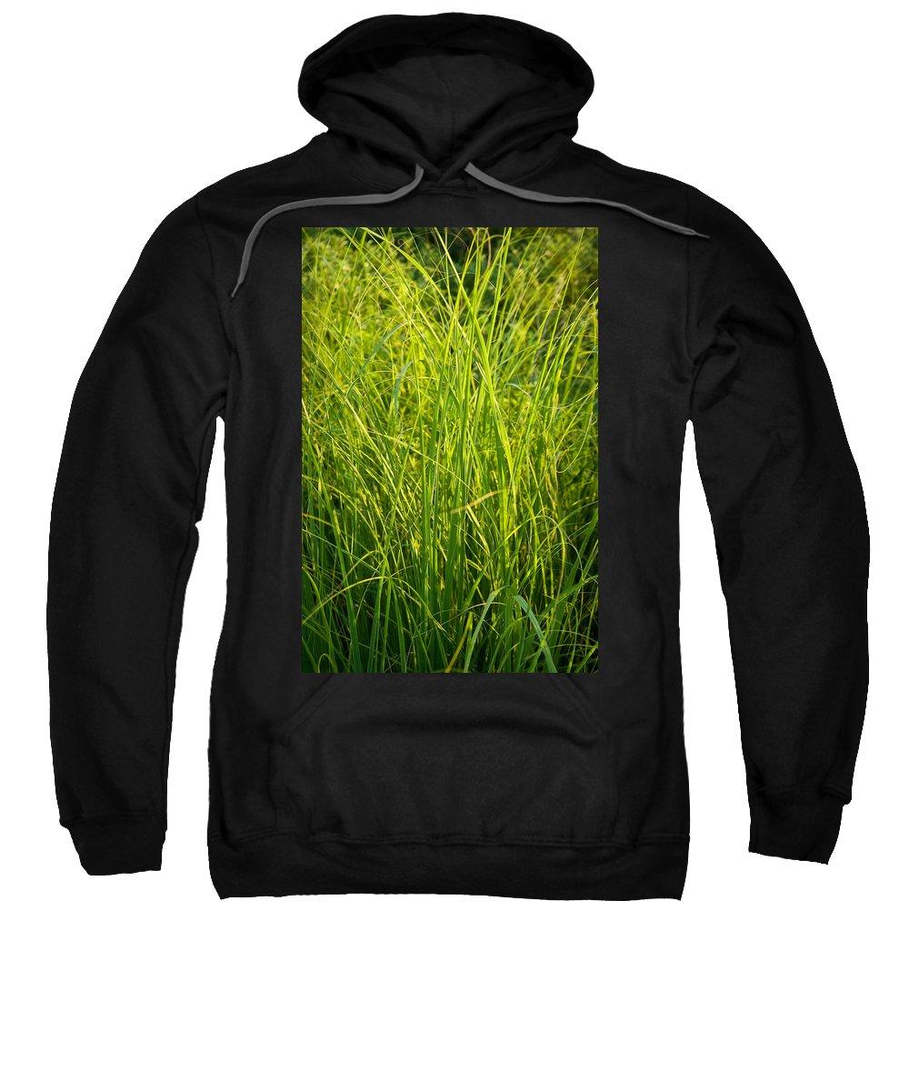 Prairie Sweatshirt featuring the photograph Midwest Prairie Grasses by Steve Gadomski