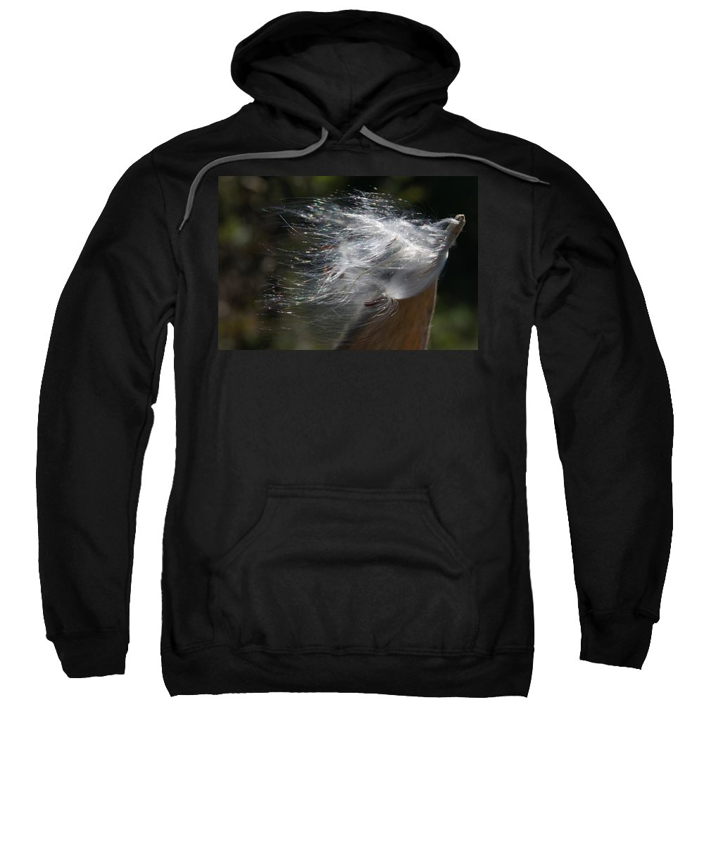 Milkweed Sweatshirt featuring the photograph Milkweed I by Joe Faherty