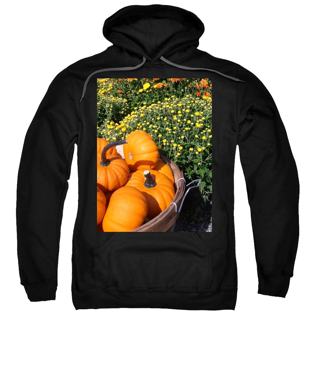 Pumpkins Sweatshirt featuring the photograph Mini Pumpkins by Kimberly Perry
