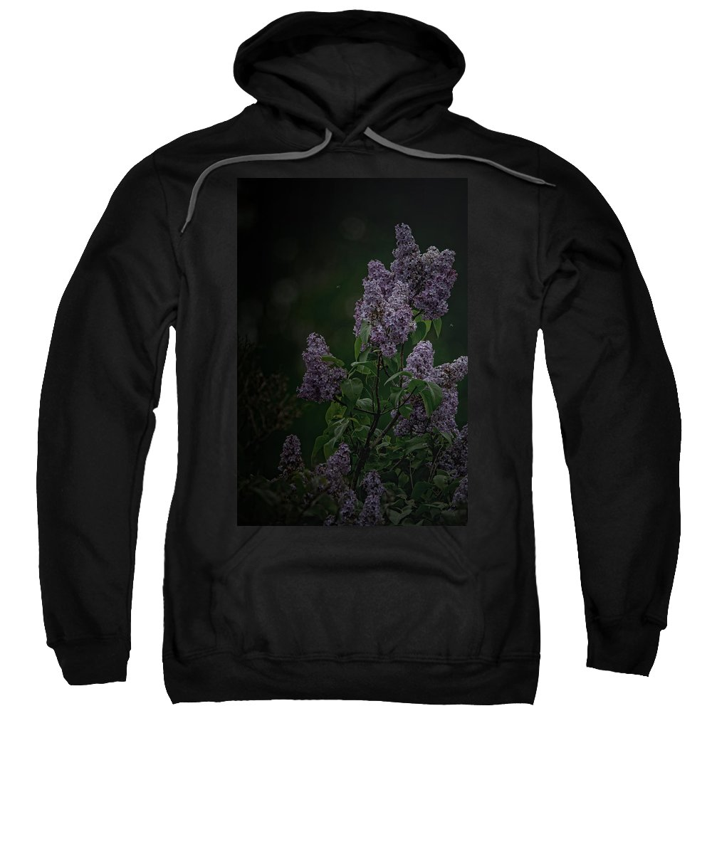 Lilacs Sweatshirt featuring the photograph Mood Lilac by Susan Capuano