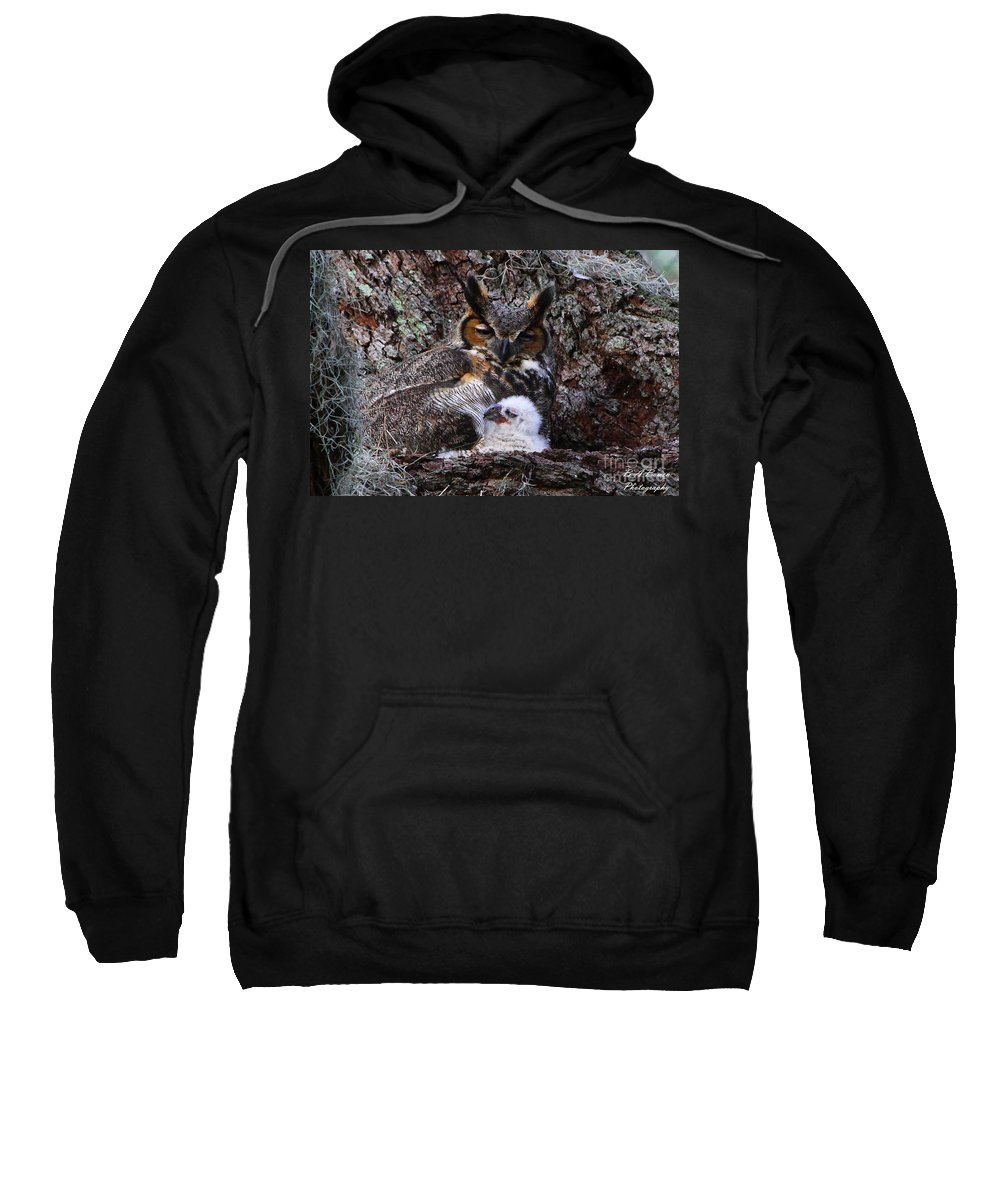 Great Horned Owl Sweatshirt featuring the photograph Mother And Baby Owl by Barbara Bowen