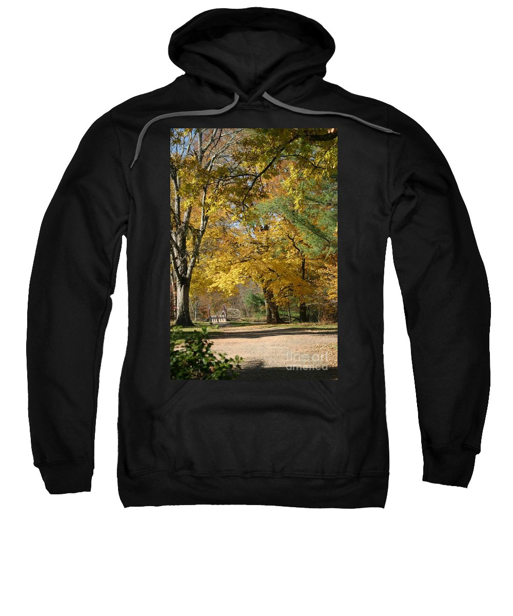 Landscape Sweatshirt featuring the photograph My Golden Days by Living Color Photography Lorraine Lynch