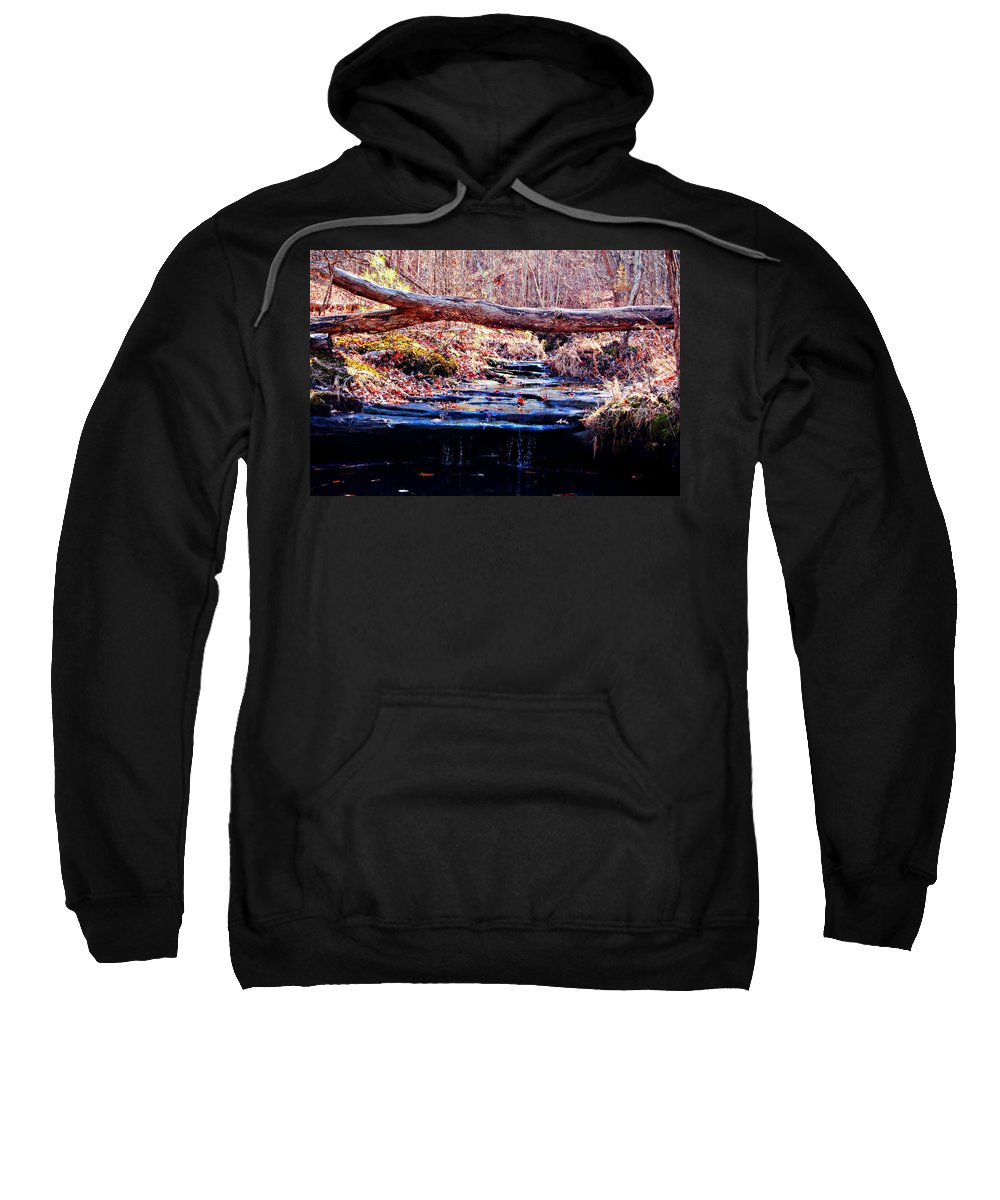 Landscape Sweatshirt featuring the photograph Natural Spring Beauty by Peggy Franz