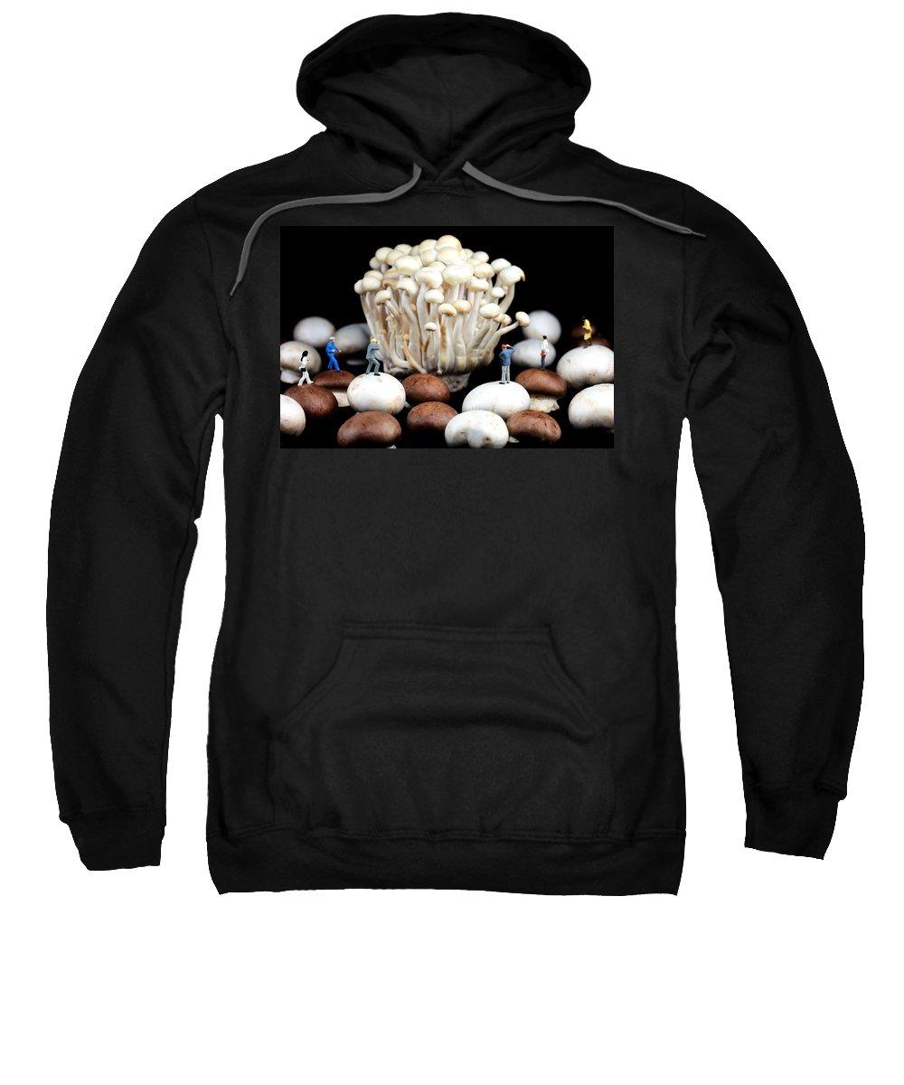 Mushroom Sweatshirt featuring the photograph Nature Photographers Shooting Adventure by Paul Ge