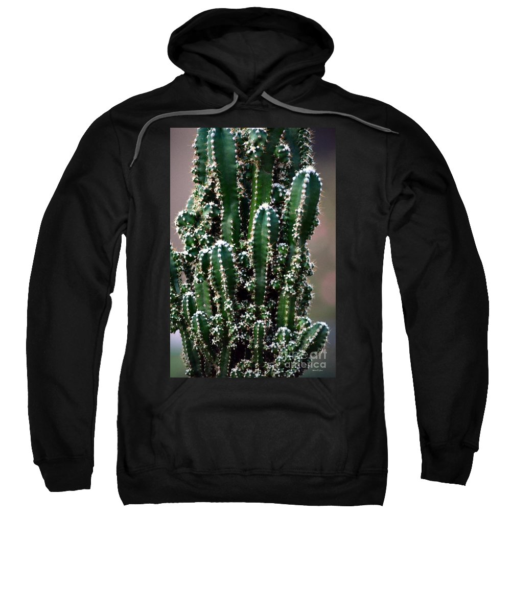 Nature Sweatshirt featuring the photograph Nature's Cactus Abstract 2 by Maria Urso