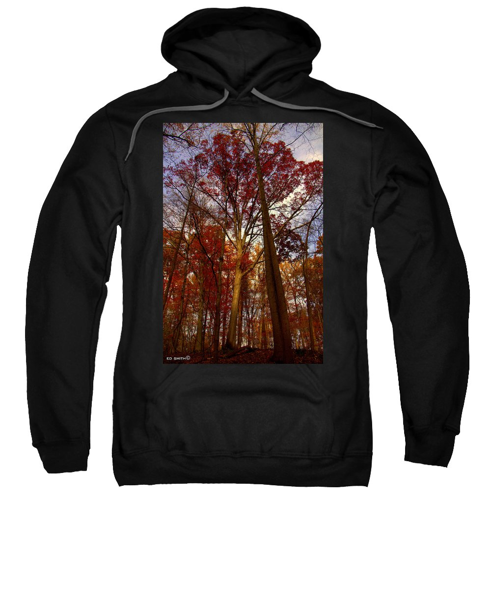 Next In Line Sweatshirt featuring the photograph Next In Line by Ed Smith