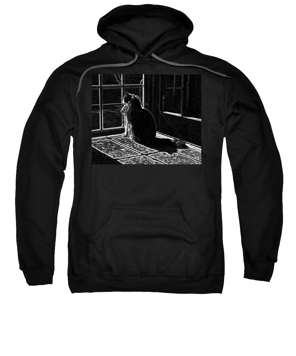 Nickel Sweatshirt featuring the photograph Nickel In The Moonlight by Sumi Martin