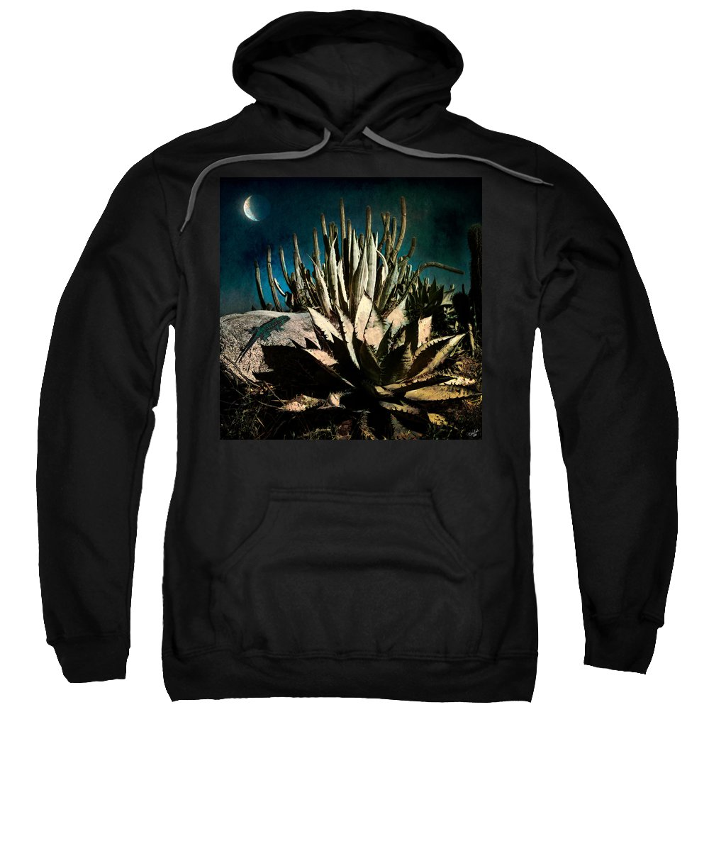Night Sweatshirt featuring the photograph Night At The Desert's Edge by Chris Lord