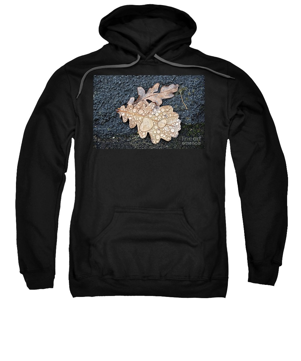Leaf Sweatshirt featuring the photograph Oak Leaves by Mats Silvan