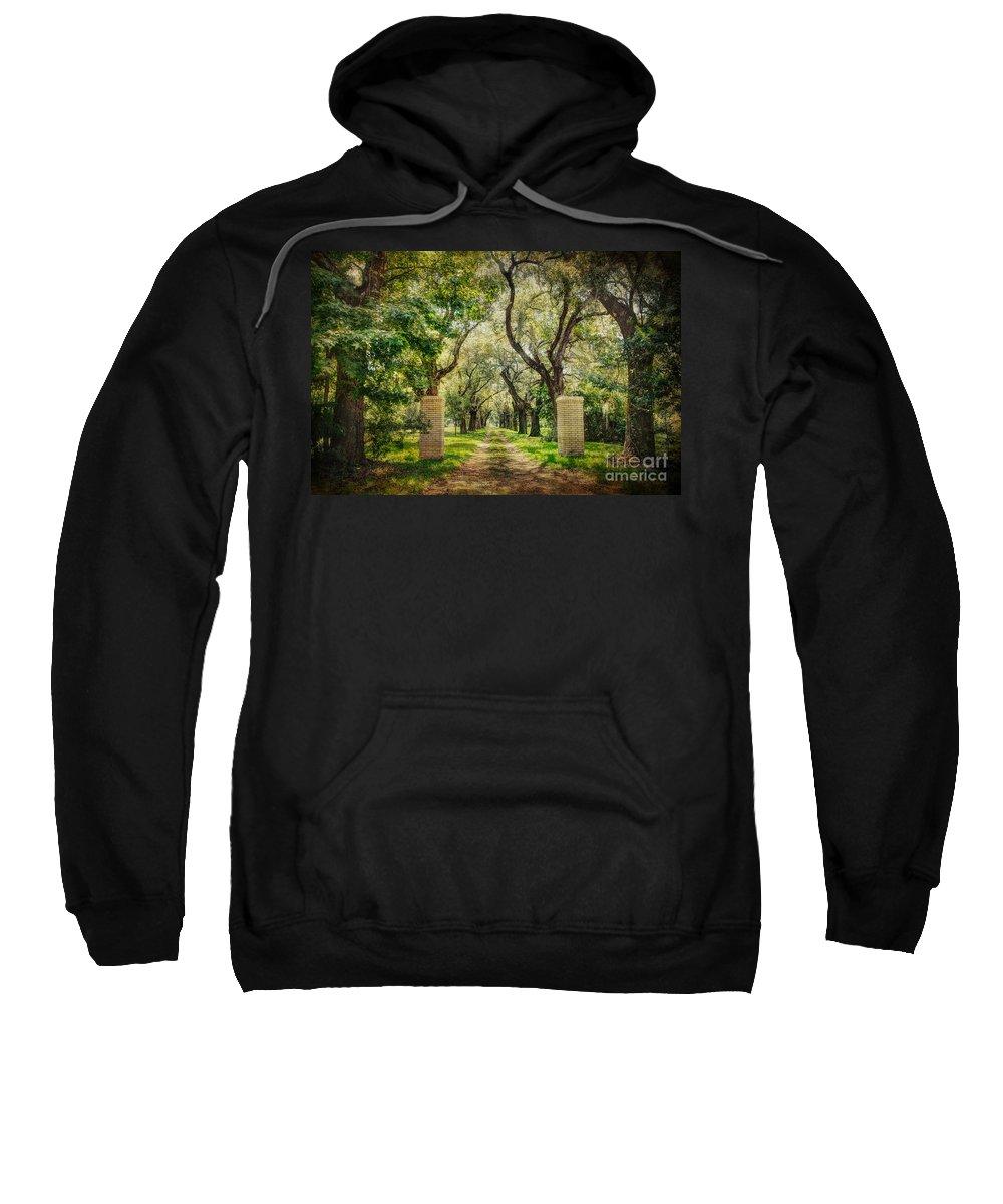 Tree Sweatshirt featuring the photograph Oak Tree Lined Drive by Joan McCool