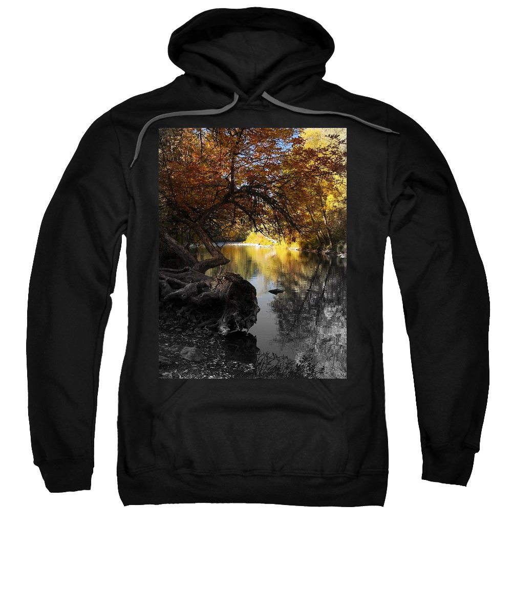 Tree Sweatshirt featuring the photograph One Last Glance by Teri Schuster