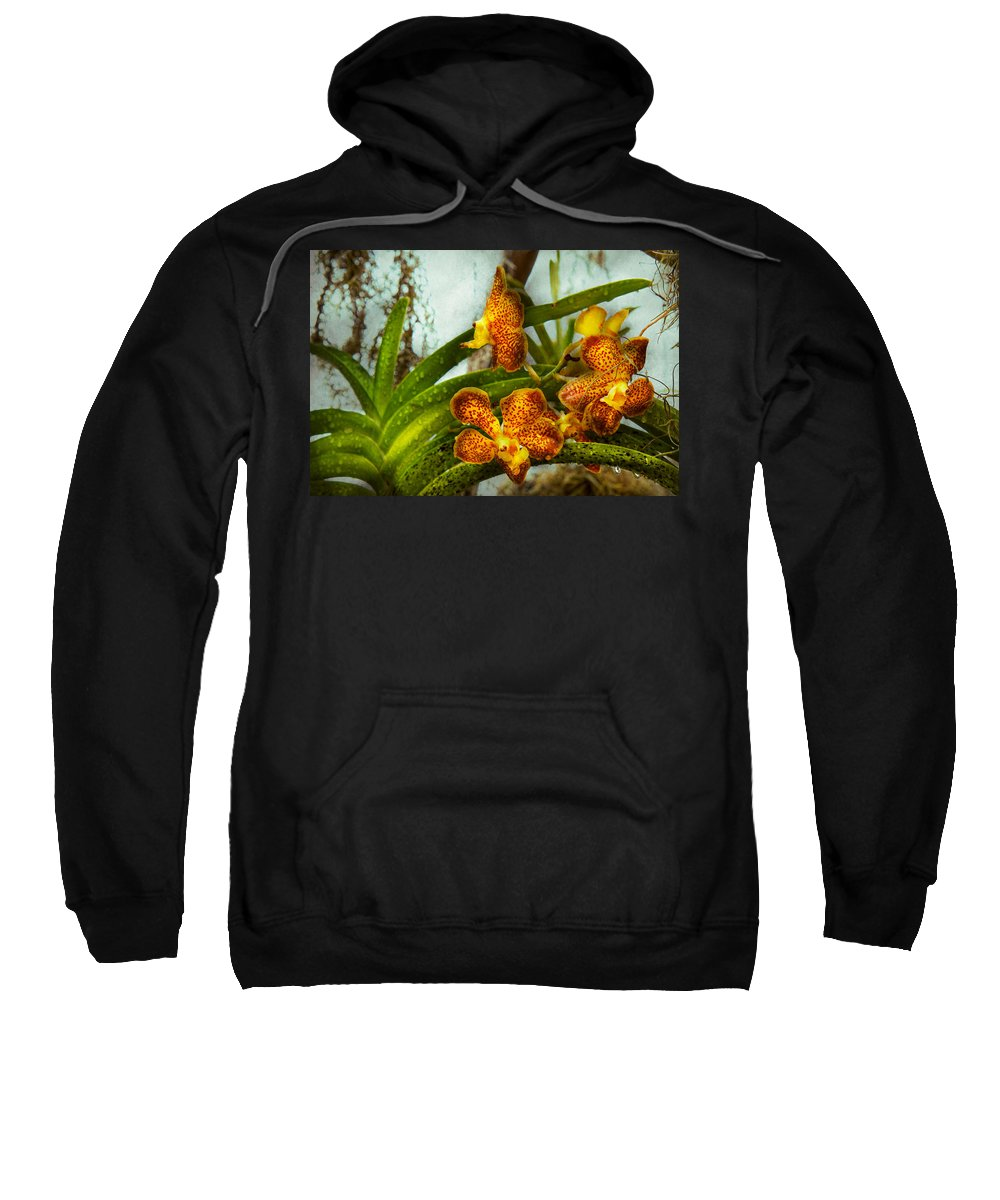 Orchid Sweatshirt featuring the photograph Orchid - Oncidium - Ripened  by Mike Savad