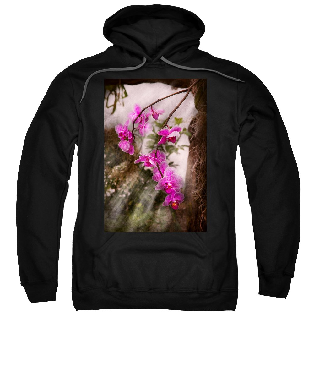 Orchid Sweatshirt featuring the photograph Orchid - Tropical Passion by Mike Savad