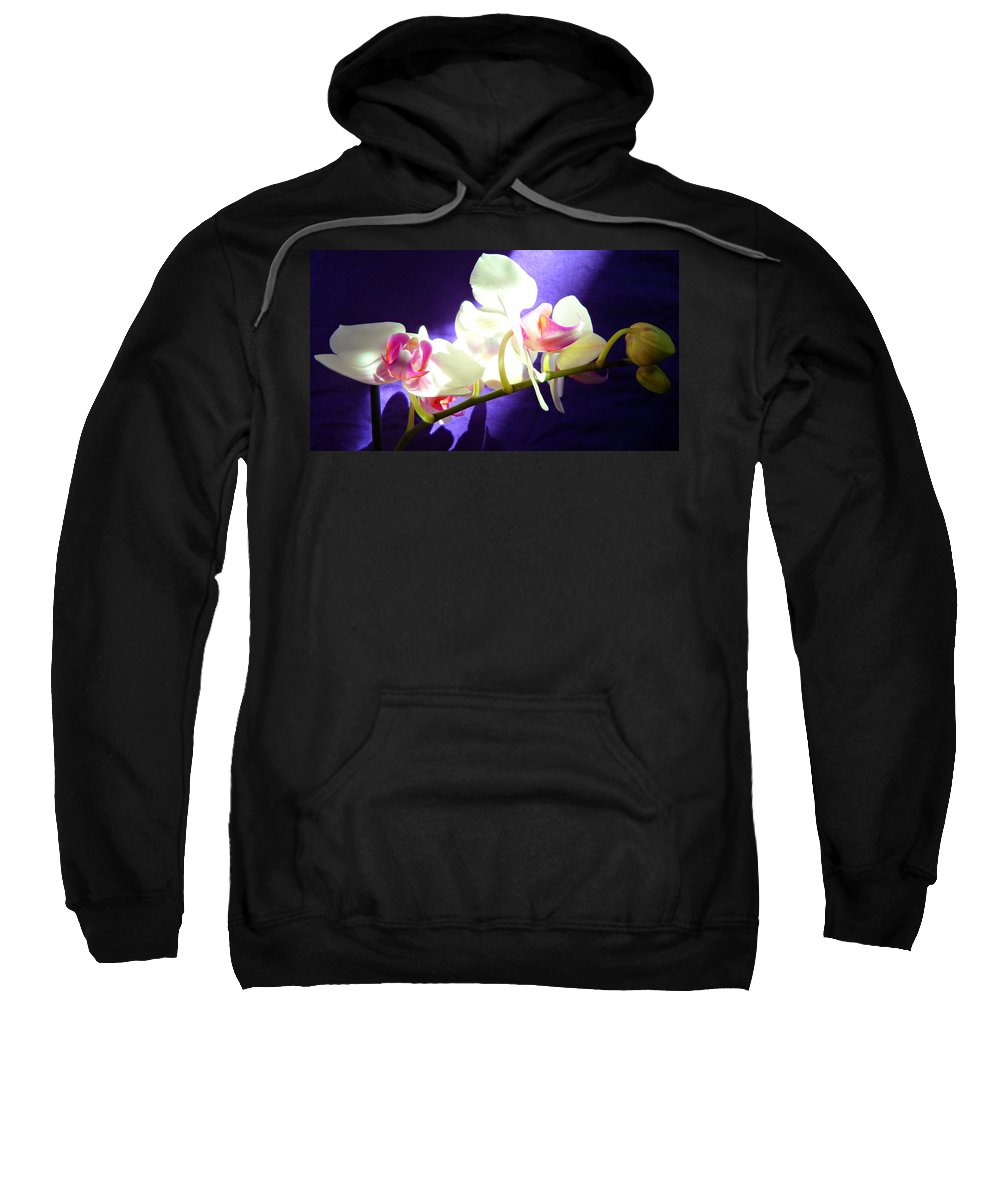 Orchids Sweatshirt featuring the photograph Orchid 3 by Kume Bryant