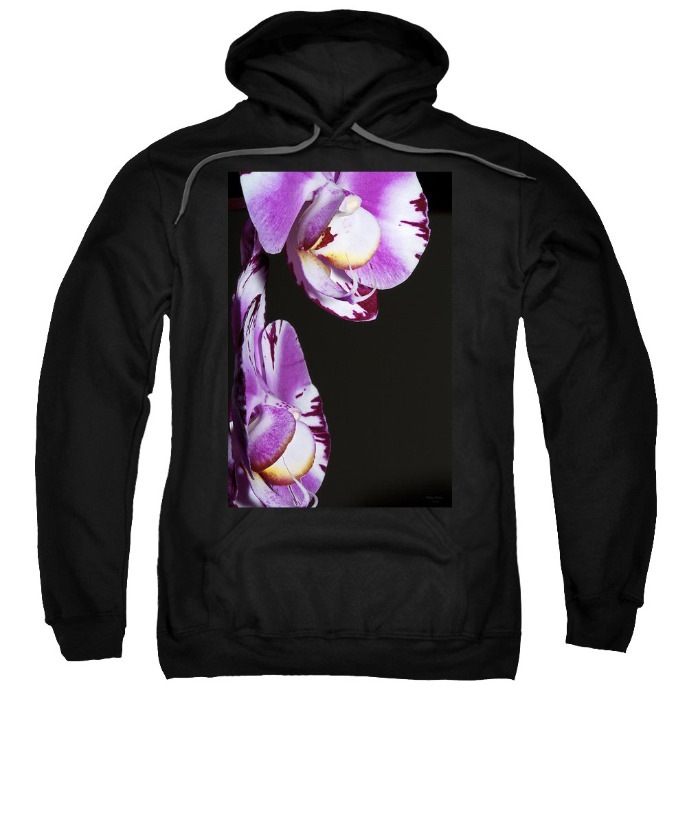Orchid Sweatshirt featuring the photograph Orchid Stem by Phyllis Denton