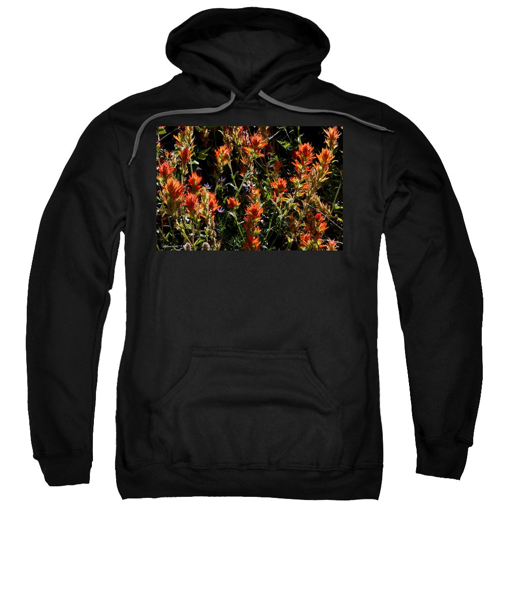 Wildflowers Sweatshirt featuring the photograph Paintbrush by Stephanie Salter