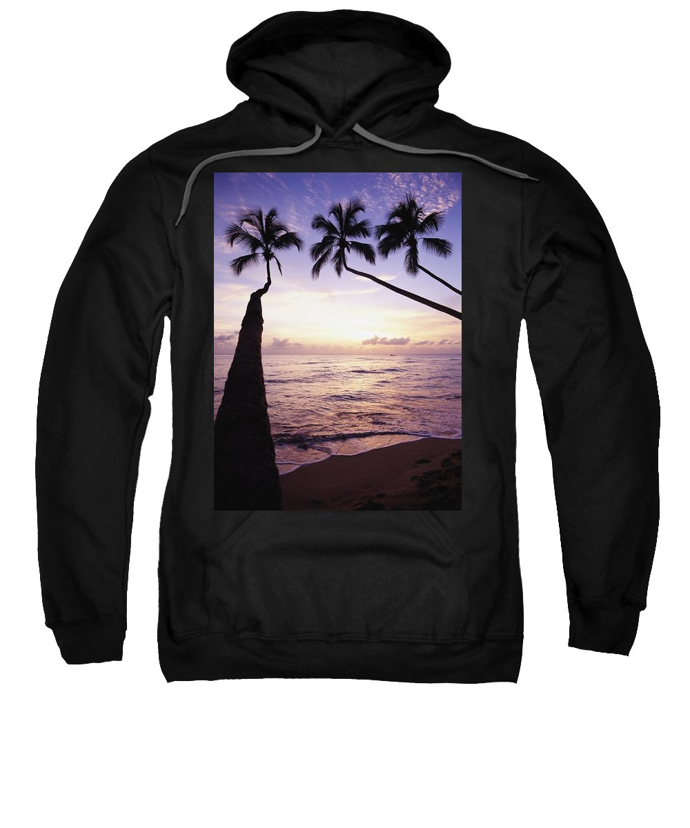 West Coast Sweatshirt featuring the photograph Palm Trees At Dusk by Axiom Photographic