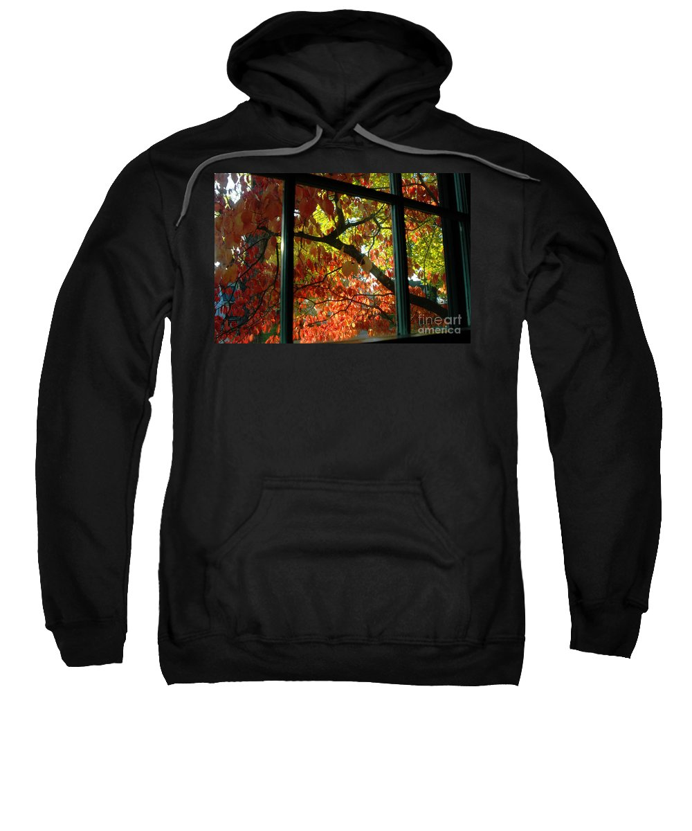Leaves Sweatshirt featuring the photograph Pane Frames by Trish Hale