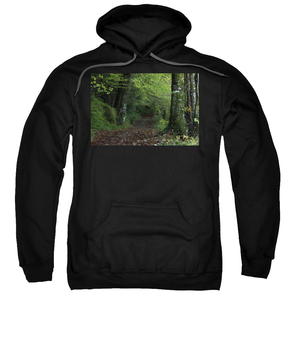Color Image Sweatshirt featuring the photograph Path Through The Woods Inistioge by Trish Punch