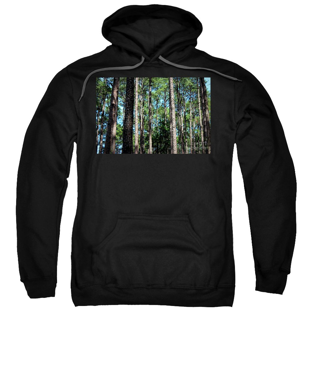 Pine Trees Sweatshirt featuring the photograph Pine Patch by Kathy White