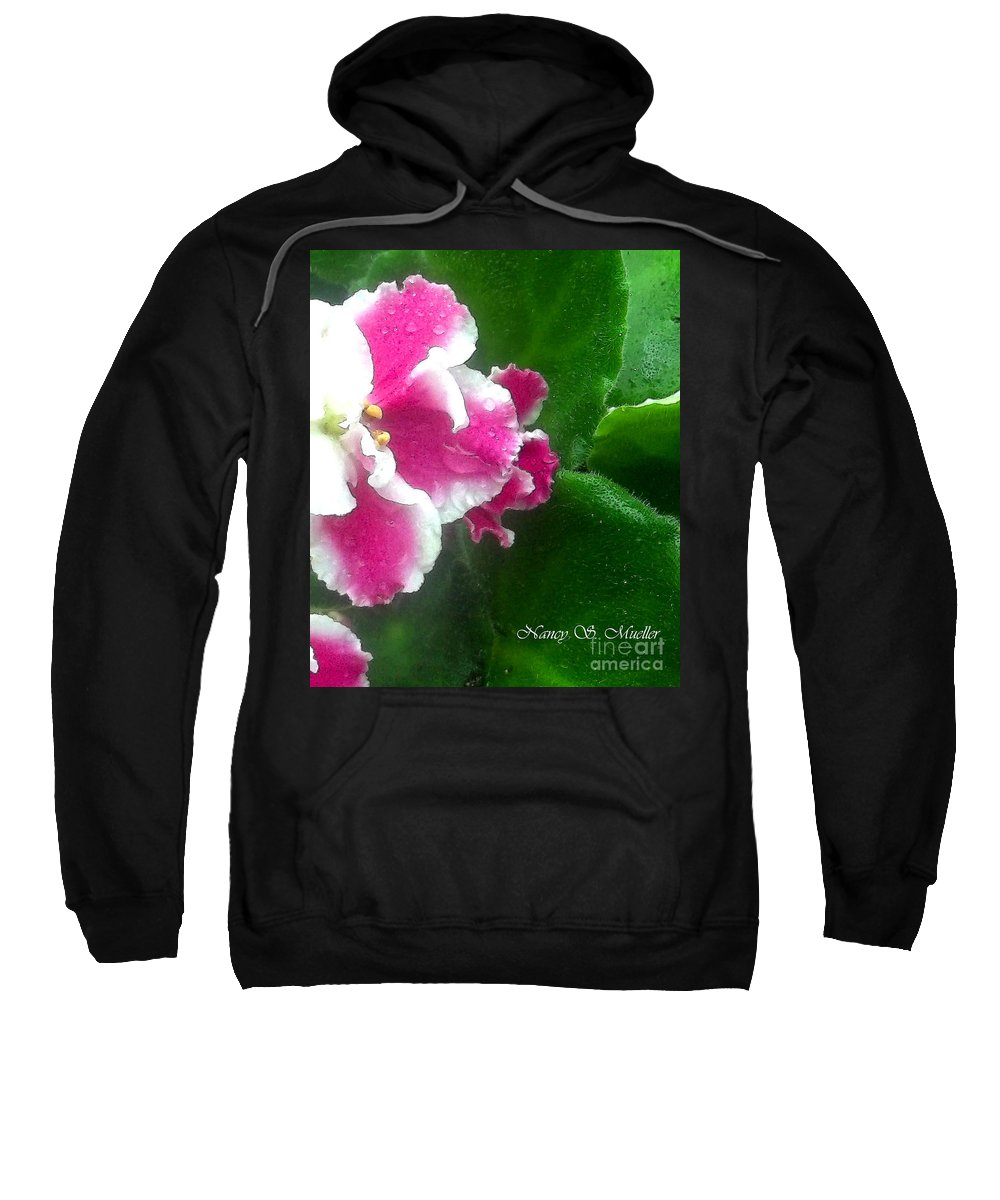 African Violets Sweatshirt featuring the photograph Pink African Violets And Leaves by Nancy Mueller