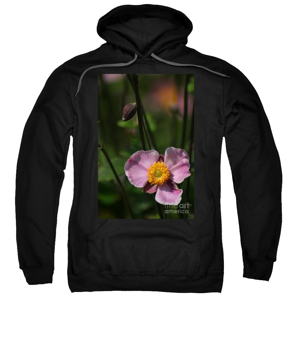 Floral Sweatshirt featuring the photograph Pink Anemone by Living Color Photography Lorraine Lynch