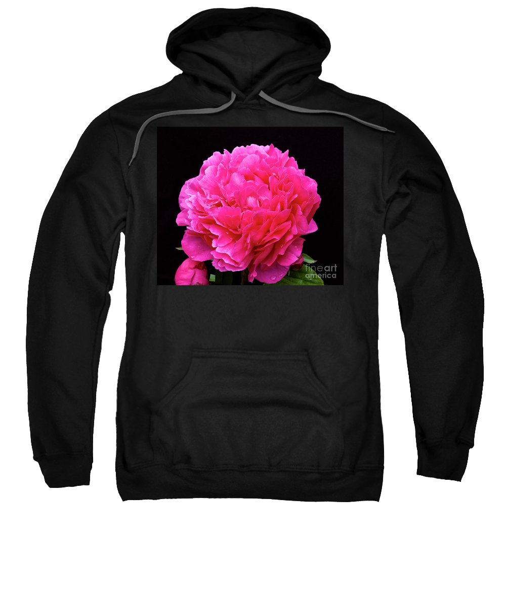 Pink Sweatshirt featuring the photograph Pink Flower After Rain by Tim Mulina