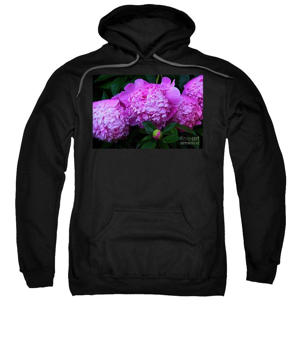 Pink Peonies Sweatshirt featuring the photograph Pink Peonies In The Rain by Byron Varvarigos