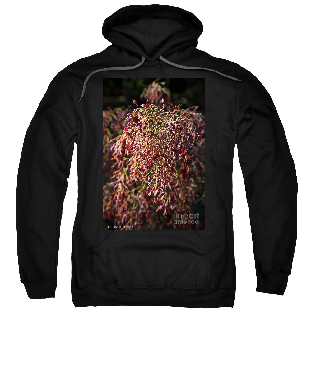 Outdoors Sweatshirt featuring the photograph Pink Plumes by Susan Herber