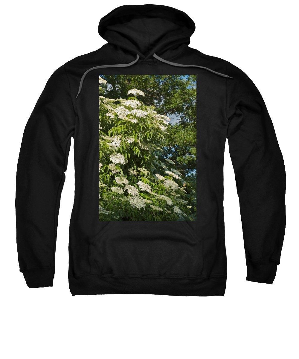Flower Sweatshirt featuring the photograph Potchen's Cascade by Joseph Yarbrough