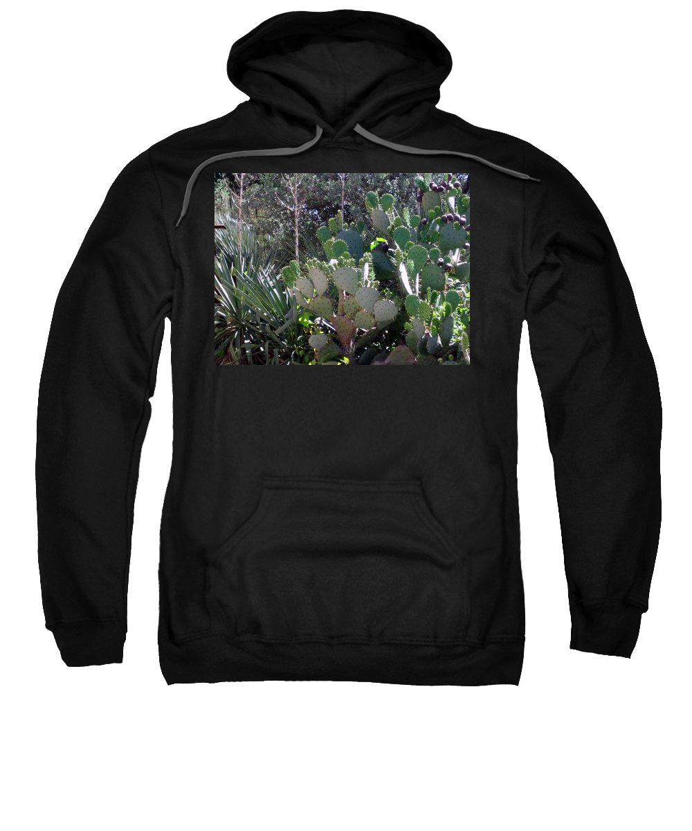 Sweatshirt featuring the photograph Prickly by Amy Hosp
