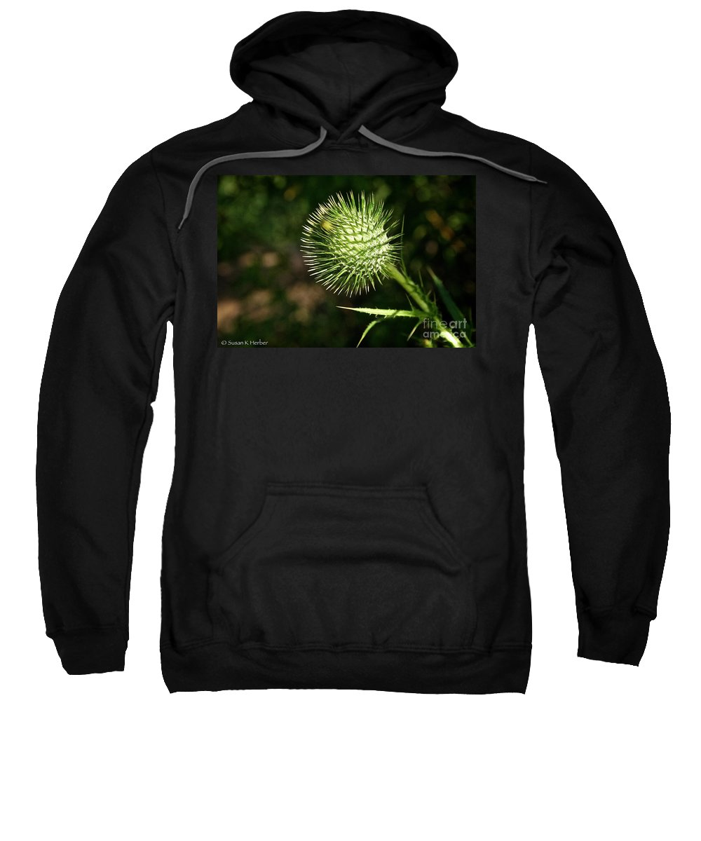 Outdoors Sweatshirt featuring the photograph Prickly Globe by Susan Herber