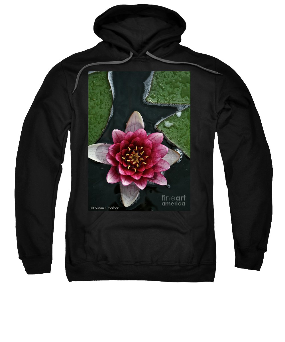 Floral Sweatshirt featuring the photograph Primo Waterlily by Susan Herber
