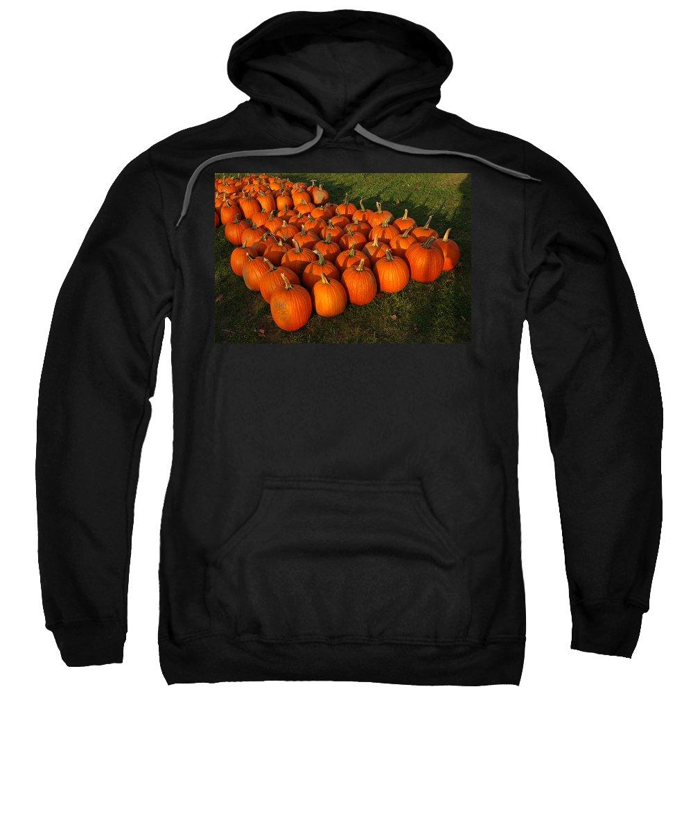 Food And Beverage Sweatshirt featuring the photograph Pumpkin Piles by LeeAnn McLaneGoetz McLaneGoetzStudioLLCcom