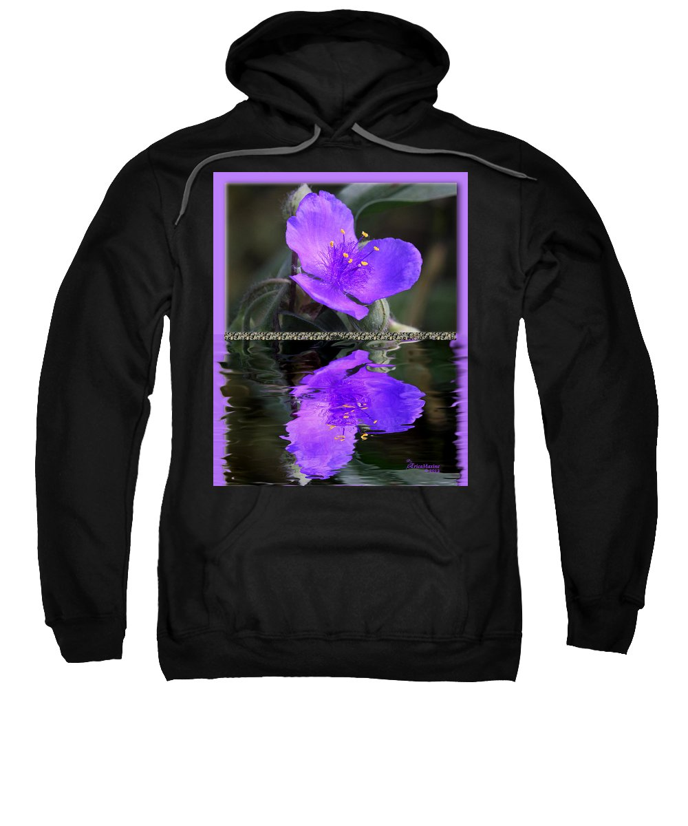 Tradescantia 'purple Profusion'. Common Name: Spiderwort Sweatshirt featuring the photograph Purple Elegance - Spider Wort by Ericamaxine Price
