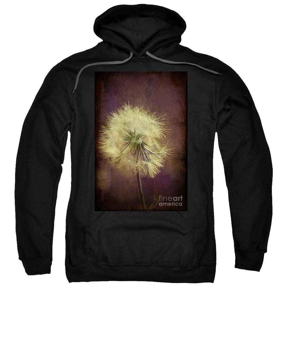 Dandelion Sweatshirt featuring the photograph Purple Passion by Joan McCool
