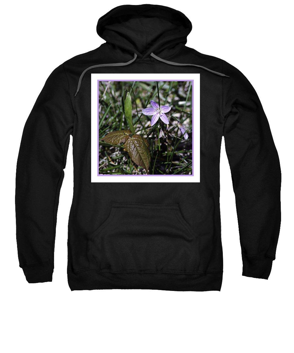 Purple Sweatshirt featuring the photograph Purple Spring Trail Flower by LeeAnn McLaneGoetz McLaneGoetzStudioLLCcom