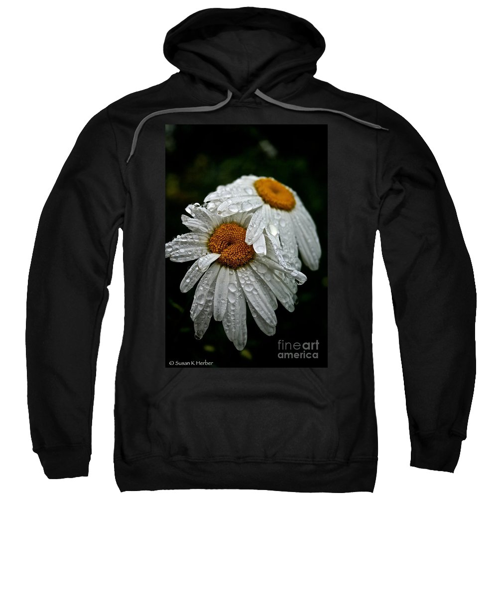 Floral Sweatshirt featuring the photograph Rainy Day Daisies by Susan Herber