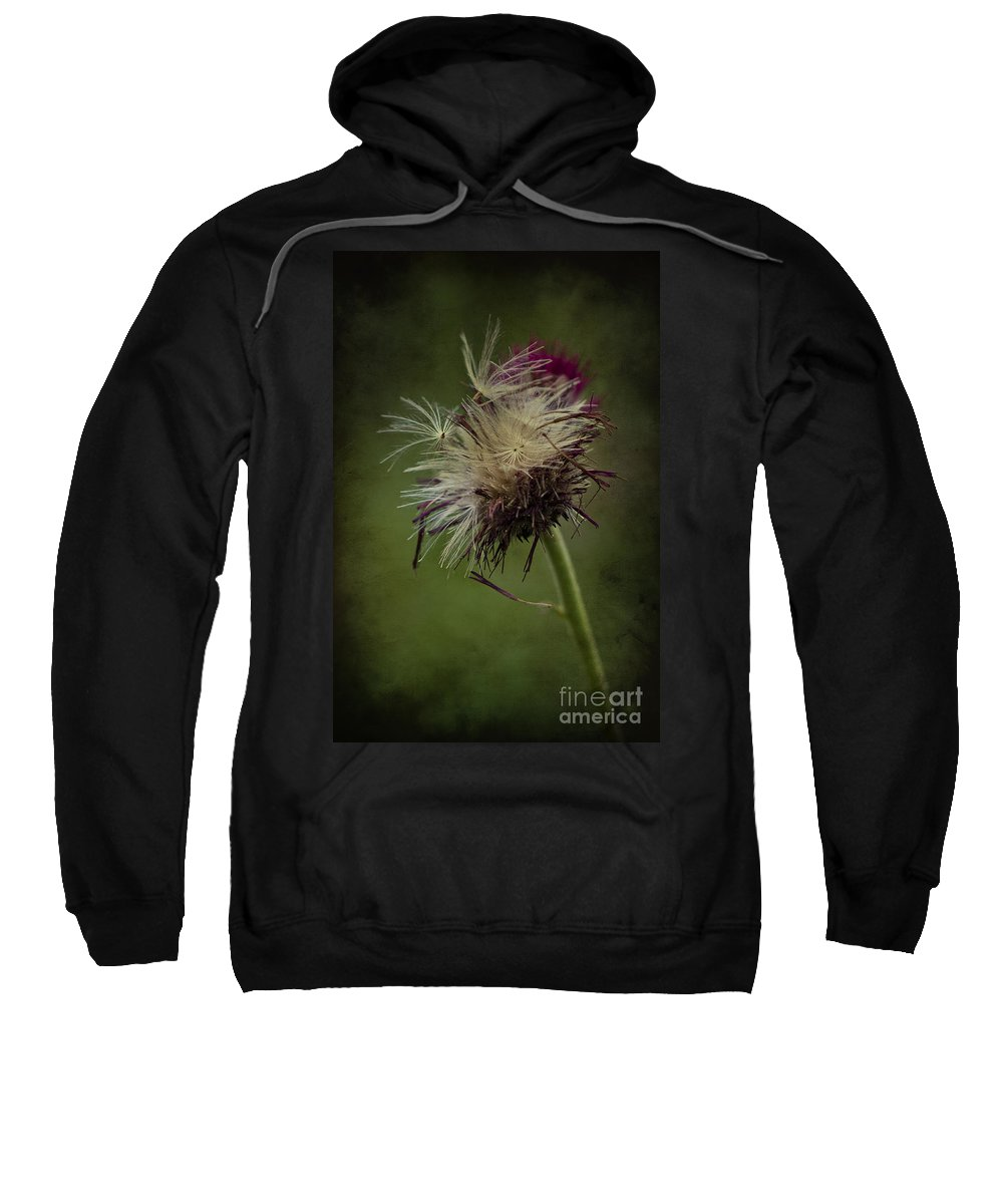 Seeds Sweatshirt featuring the photograph Ready To Fly Away... by Clare Bambers