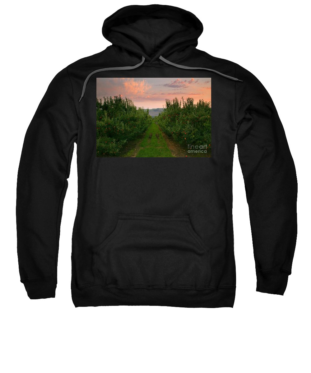 Apple Sweatshirt featuring the photograph Red Apple Sunset by Mike Dawson