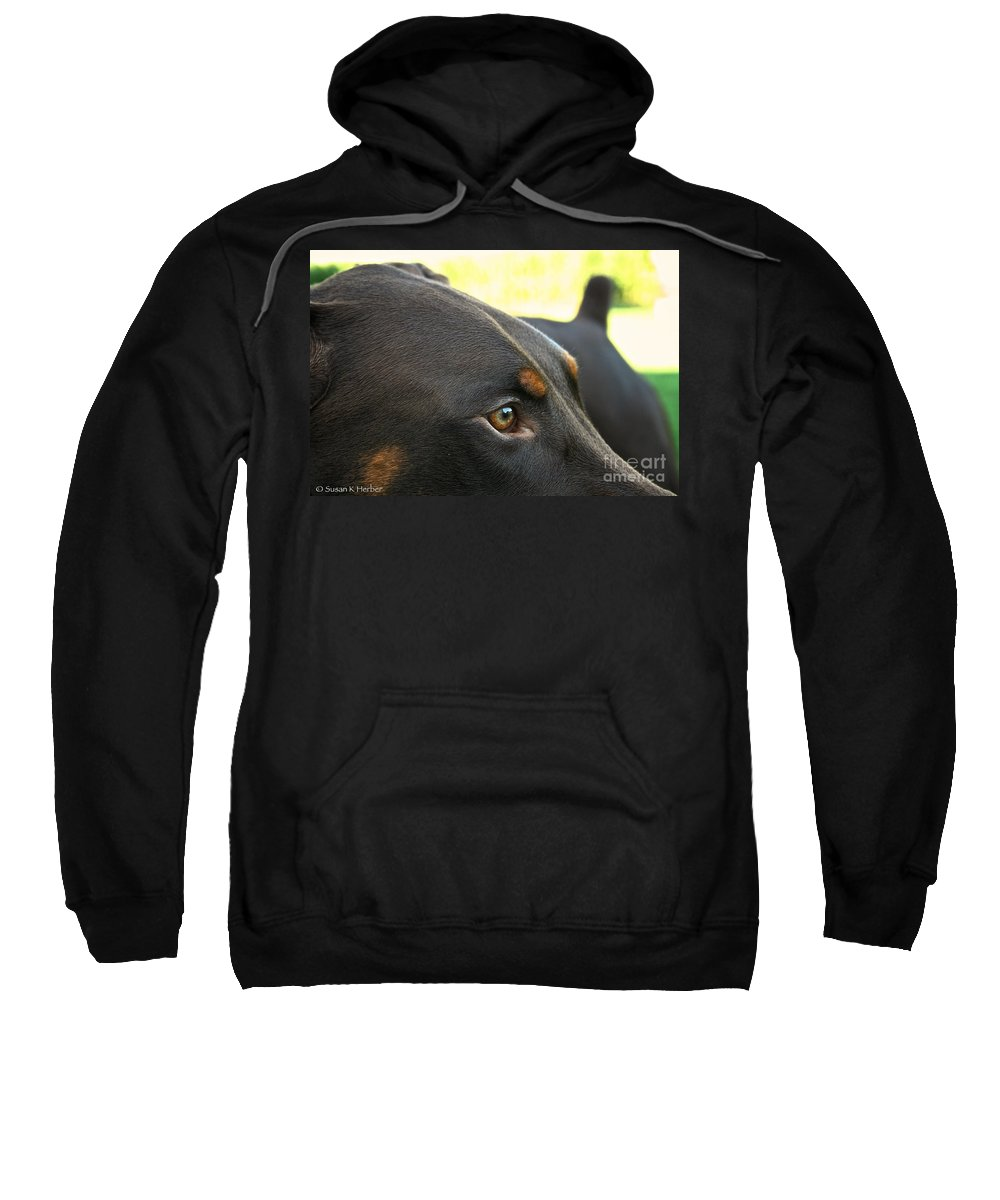 Mammal Sweatshirt featuring the photograph Red Dobe by Susan Herber