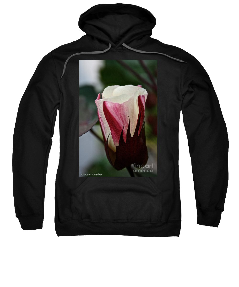 Outdoors Sweatshirt featuring the photograph Red Foliated White by Susan Herber