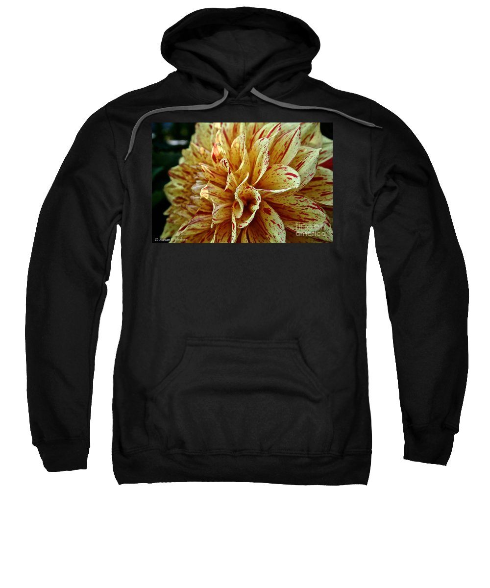 Outdoors Sweatshirt featuring the photograph Red Freckles by Susan Herber
