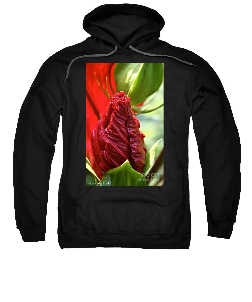 Outdoors Sweatshirt featuring the photograph Red Hibiscus Torch by Susan Herber