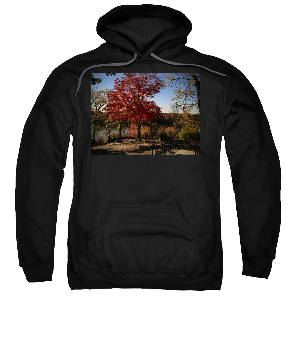 Fall Sweatshirt featuring the photograph River Tree by Tim Nyberg