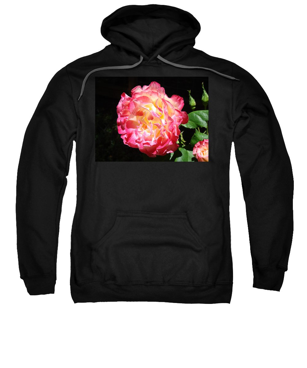 Rose Sweatshirt featuring the photograph Rose Floral Fine Art Prints Pink Roses Flower by Baslee Troutman