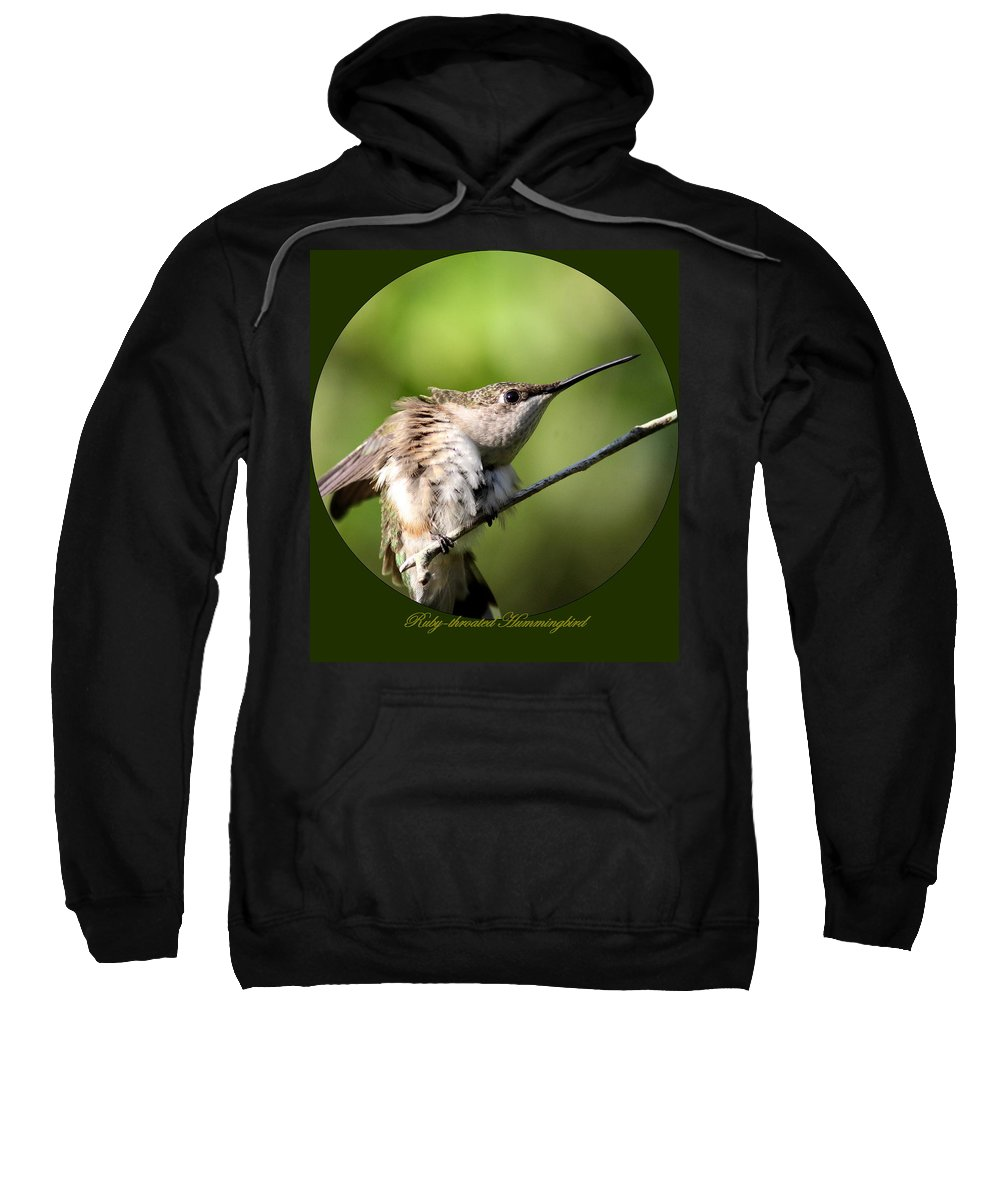 Hummingbird Sweatshirt featuring the photograph Ruby-throated Hummingbird - The Stretch by Travis Truelove