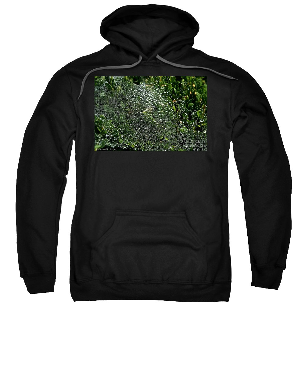 Outdoors Sweatshirt featuring the photograph Saturated Spider Web by Susan Herber